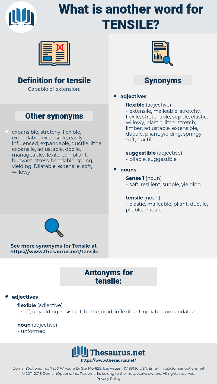 tensile, synonym tensile, another word for tensile, words like tensile, thesaurus tensile