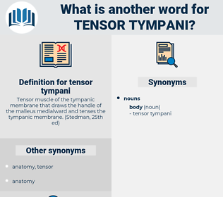 tensor tympani, synonym tensor tympani, another word for tensor tympani, words like tensor tympani, thesaurus tensor tympani