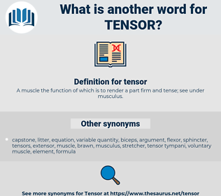 tensor, synonym tensor, another word for tensor, words like tensor, thesaurus tensor
