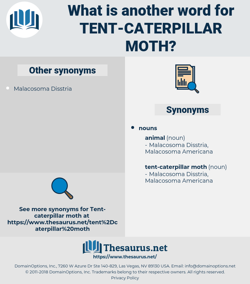 tent-caterpillar moth, synonym tent-caterpillar moth, another word for tent-caterpillar moth, words like tent-caterpillar moth, thesaurus tent-caterpillar moth