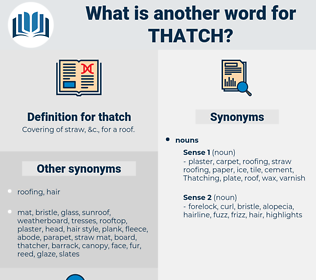 thatch, synonym thatch, another word for thatch, words like thatch, thesaurus thatch