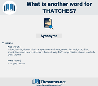 thatches, synonym thatches, another word for thatches, words like thatches, thesaurus thatches