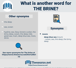 the brine, synonym the brine, another word for the brine, words like the brine, thesaurus the brine