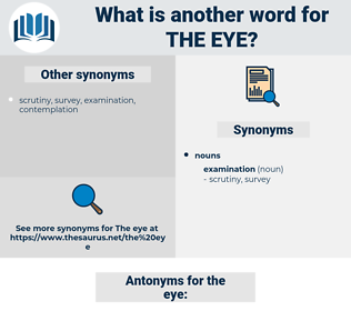 the eye, synonym the eye, another word for the eye, words like the eye, thesaurus the eye