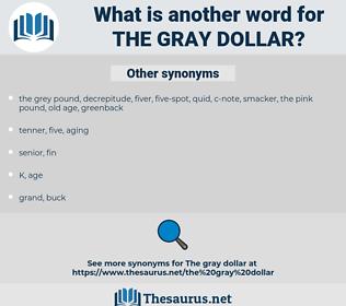 the gray dollar, synonym the gray dollar, another word for the gray dollar, words like the gray dollar, thesaurus the gray dollar
