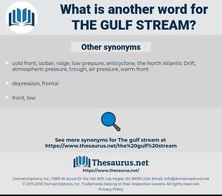 the Gulf Stream, synonym the Gulf Stream, another word for the Gulf Stream, words like the Gulf Stream, thesaurus the Gulf Stream