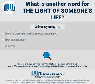 the light of someone's life, synonym the light of someone's life, another word for the light of someone's life, words like the light of someone's life, thesaurus the light of someone's life