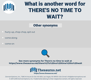 there's no time to wait, synonym there's no time to wait, another word for there's no time to wait, words like there's no time to wait, thesaurus there's no time to wait