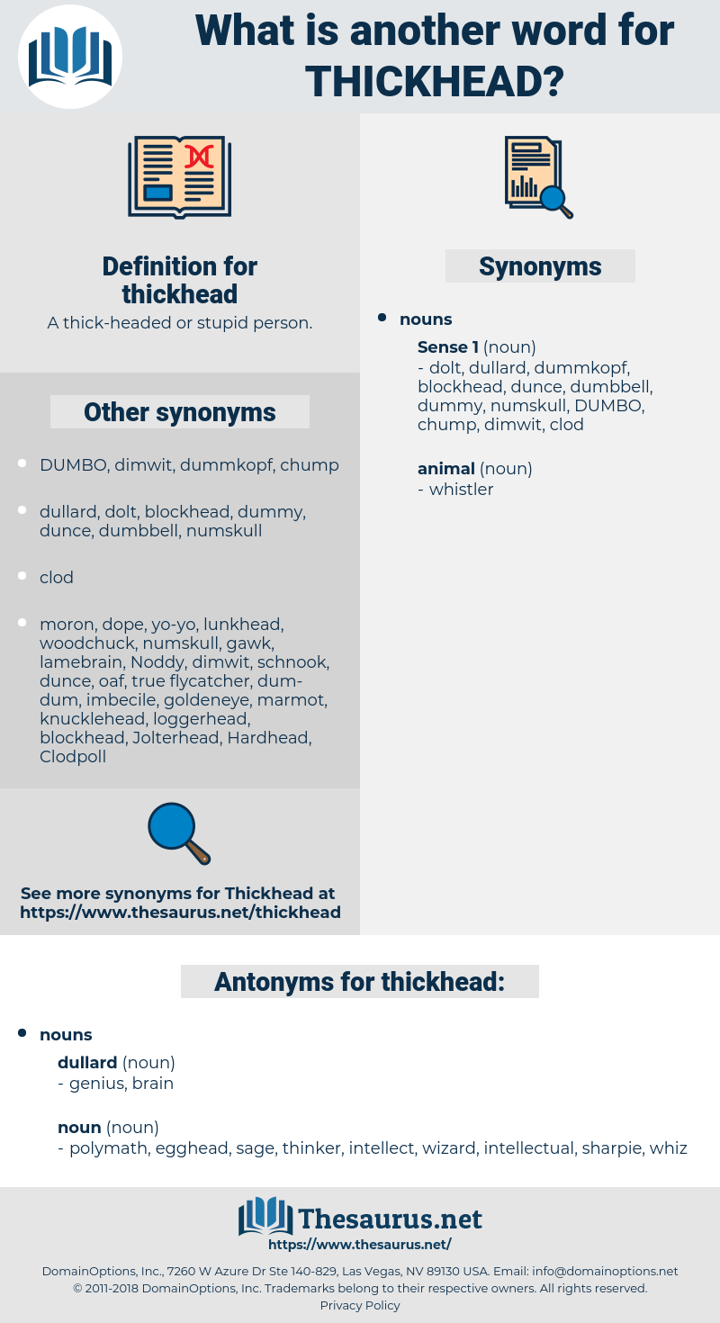 thickhead, synonym thickhead, another word for thickhead, words like thickhead, thesaurus thickhead