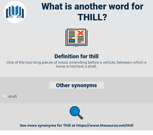 thill, synonym thill, another word for thill, words like thill, thesaurus thill