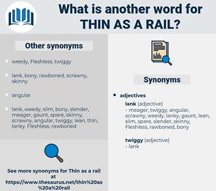 thin as a rail, synonym thin as a rail, another word for thin as a rail, words like thin as a rail, thesaurus thin as a rail