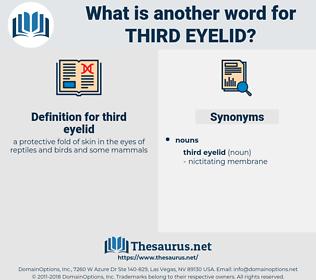 third eyelid, synonym third eyelid, another word for third eyelid, words like third eyelid, thesaurus third eyelid
