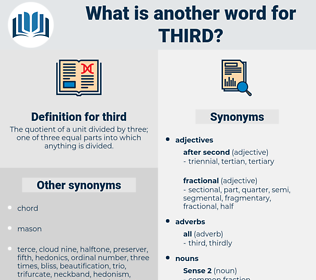 third, synonym third, another word for third, words like third, thesaurus third