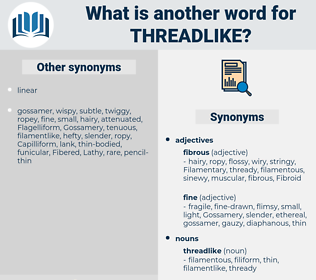 threadlike, synonym threadlike, another word for threadlike, words like threadlike, thesaurus threadlike