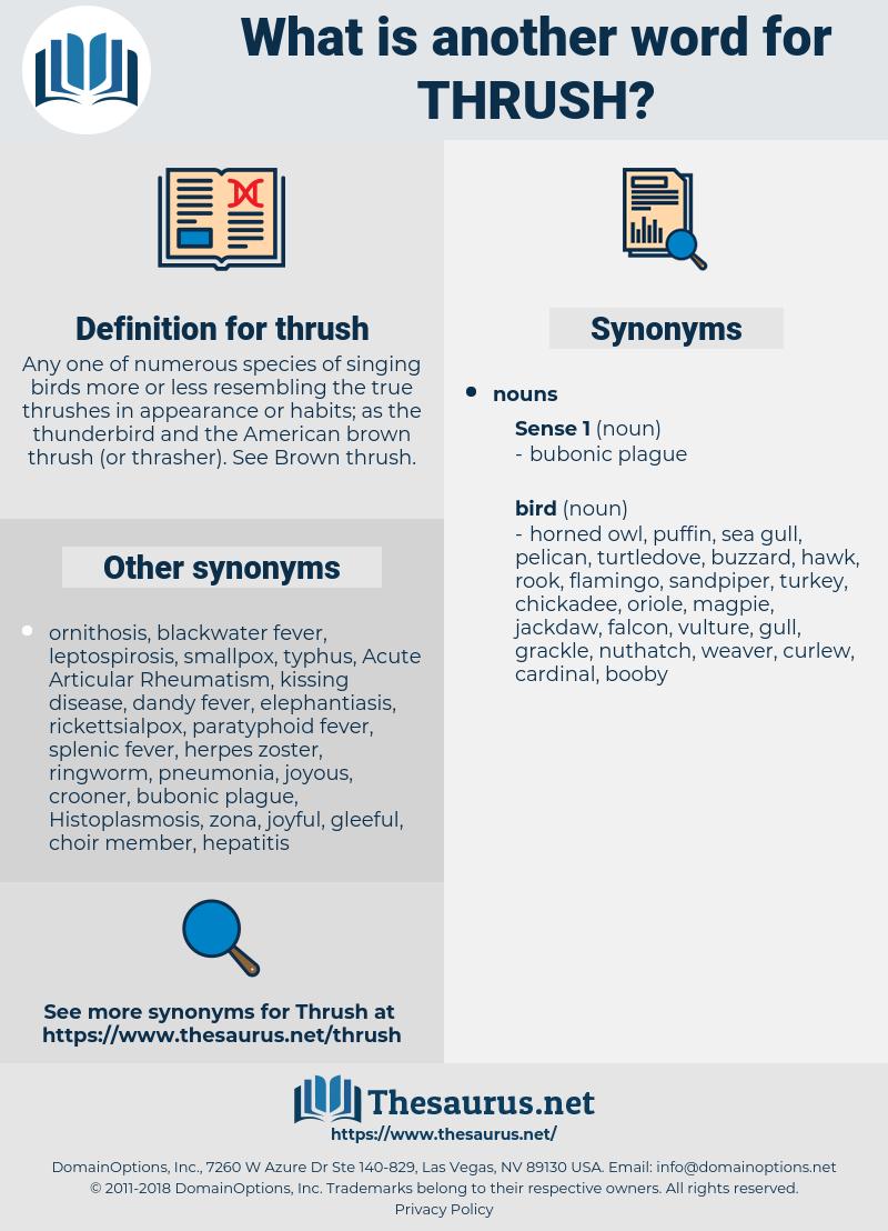 thrush, synonym thrush, another word for thrush, words like thrush, thesaurus thrush
