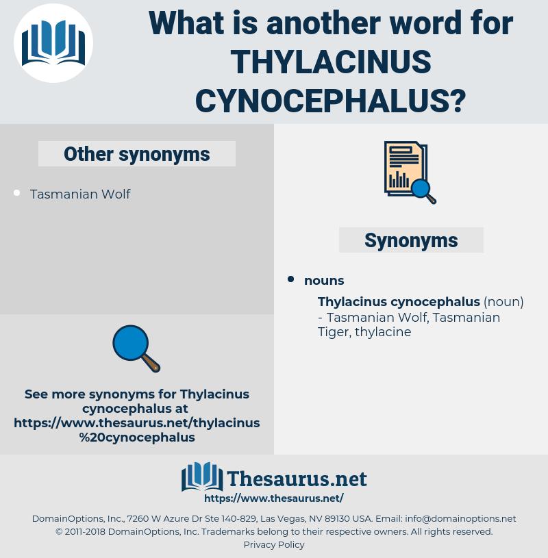Thylacinus Cynocephalus, synonym Thylacinus Cynocephalus, another word for Thylacinus Cynocephalus, words like Thylacinus Cynocephalus, thesaurus Thylacinus Cynocephalus