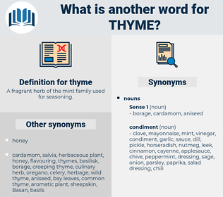 thyme, synonym thyme, another word for thyme, words like thyme, thesaurus thyme