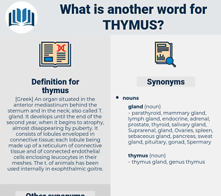 thymus, synonym thymus, another word for thymus, words like thymus, thesaurus thymus