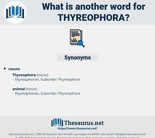 thyreophora, synonym thyreophora, another word for thyreophora, words like thyreophora, thesaurus thyreophora