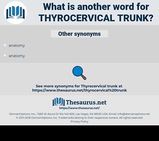 thyrocervical trunk, synonym thyrocervical trunk, another word for thyrocervical trunk, words like thyrocervical trunk, thesaurus thyrocervical trunk