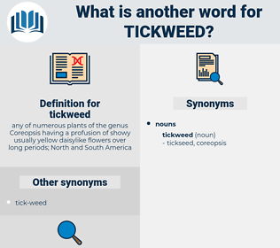 tickweed, synonym tickweed, another word for tickweed, words like tickweed, thesaurus tickweed