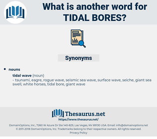 tidal bores, synonym tidal bores, another word for tidal bores, words like tidal bores, thesaurus tidal bores