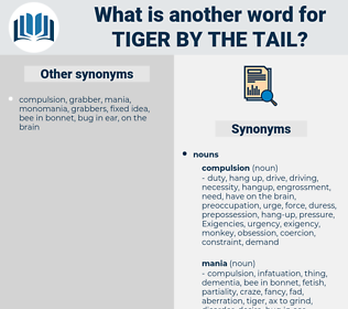 tiger by the tail, synonym tiger by the tail, another word for tiger by the tail, words like tiger by the tail, thesaurus tiger by the tail