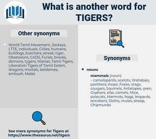 Tigers, synonym Tigers, another word for Tigers, words like Tigers, thesaurus Tigers