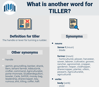 tiller, synonym tiller, another word for tiller, words like tiller, thesaurus tiller