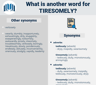 tiresomely, synonym tiresomely, another word for tiresomely, words like tiresomely, thesaurus tiresomely