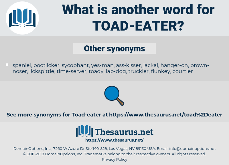 Toad-eater, synonym Toad-eater, another word for Toad-eater, words like Toad-eater, thesaurus Toad-eater