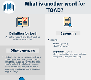 toad, synonym toad, another word for toad, words like toad, thesaurus toad