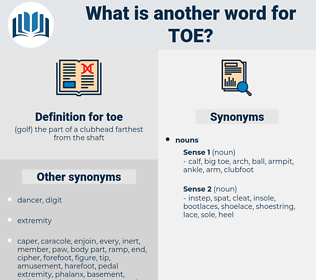 toe, synonym toe, another word for toe, words like toe, thesaurus toe