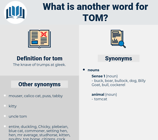 tom, synonym tom, another word for tom, words like tom, thesaurus tom