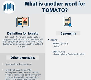 tomato, synonym tomato, another word for tomato, words like tomato, thesaurus tomato