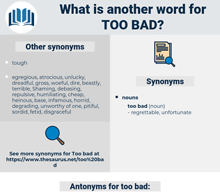 too bad, synonym too bad, another word for too bad, words like too bad, thesaurus too bad