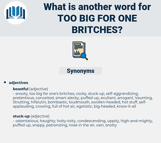 too big for one britches, synonym too big for one britches, another word for too big for one britches, words like too big for one britches, thesaurus too big for one britches