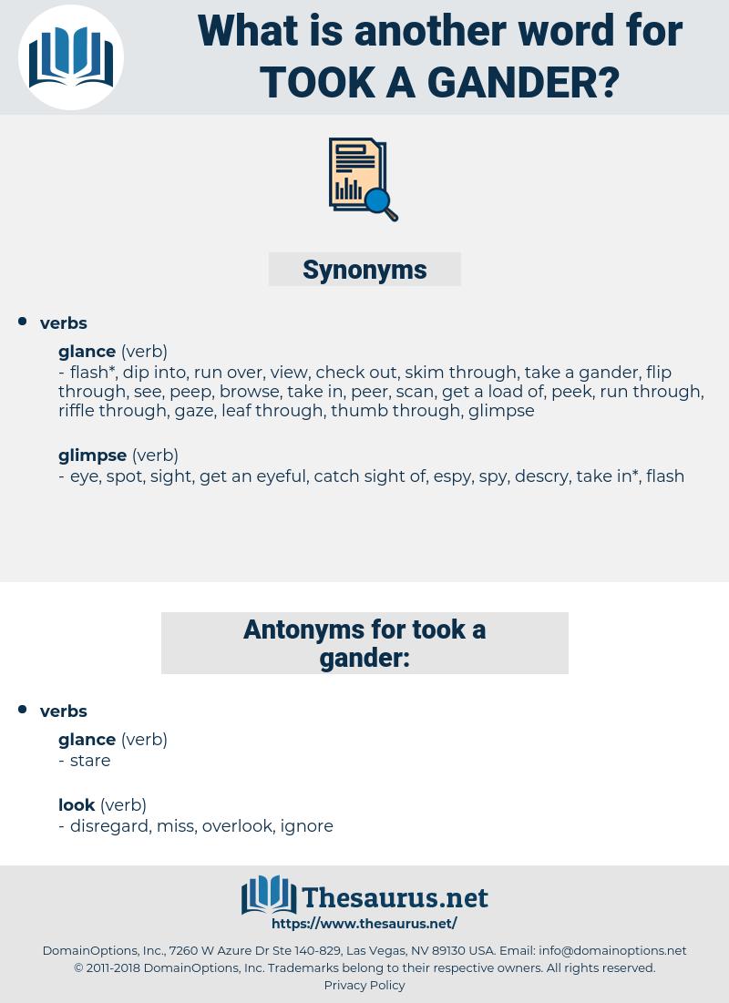 took a gander, synonym took a gander, another word for took a gander, words like took a gander, thesaurus took a gander