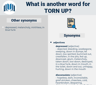 torn-up, synonym torn-up, another word for torn-up, words like torn-up, thesaurus torn-up