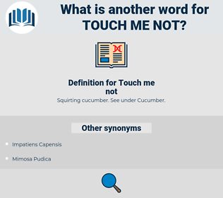 touch-me-not, synonym touch-me-not, another word for touch-me-not, words like touch-me-not, thesaurus touch-me-not