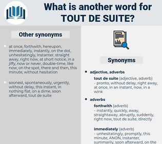 tout de suite, synonym tout de suite, another word for tout de suite, words like tout de suite, thesaurus tout de suite