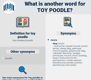 toy poodle, synonym toy poodle, another word for toy poodle, words like toy poodle, thesaurus toy poodle
