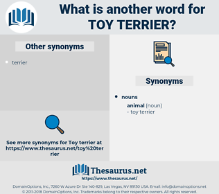 toy terrier, synonym toy terrier, another word for toy terrier, words like toy terrier, thesaurus toy terrier