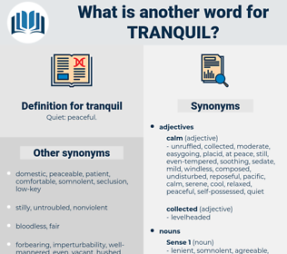 tranquil, synonym tranquil, another word for tranquil, words like tranquil, thesaurus tranquil