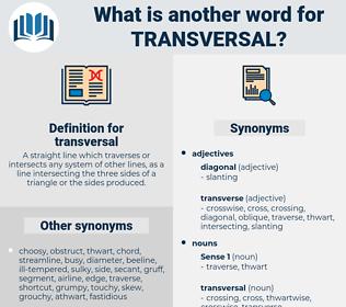 transversal, synonym transversal, another word for transversal, words like transversal, thesaurus transversal