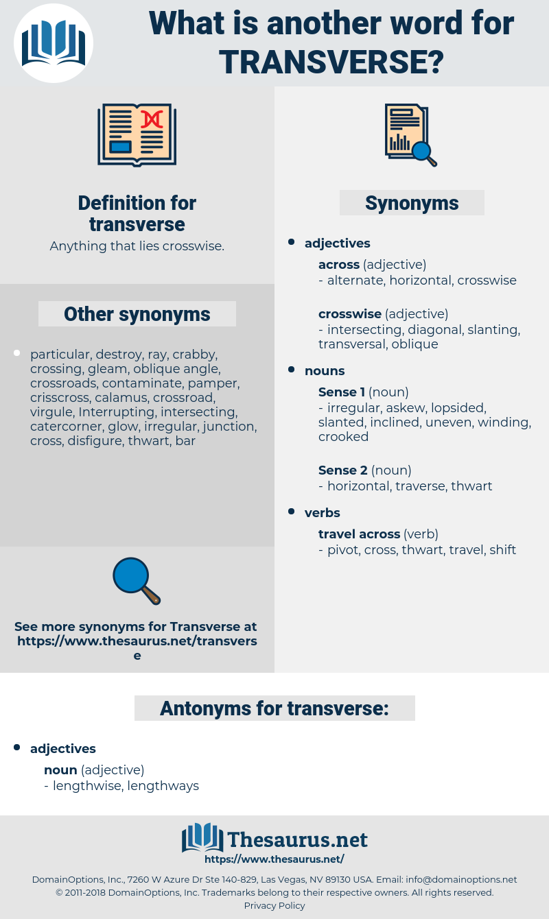 transverse, synonym transverse, another word for transverse, words like transverse, thesaurus transverse