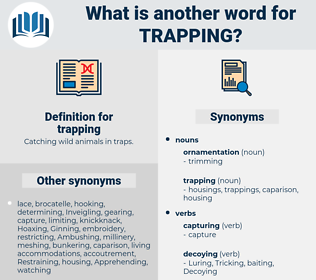 trapping, synonym trapping, another word for trapping, words like trapping, thesaurus trapping