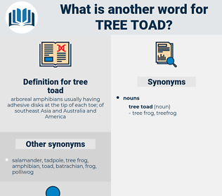 tree toad, synonym tree toad, another word for tree toad, words like tree toad, thesaurus tree toad