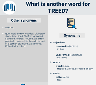 treed, synonym treed, another word for treed, words like treed, thesaurus treed