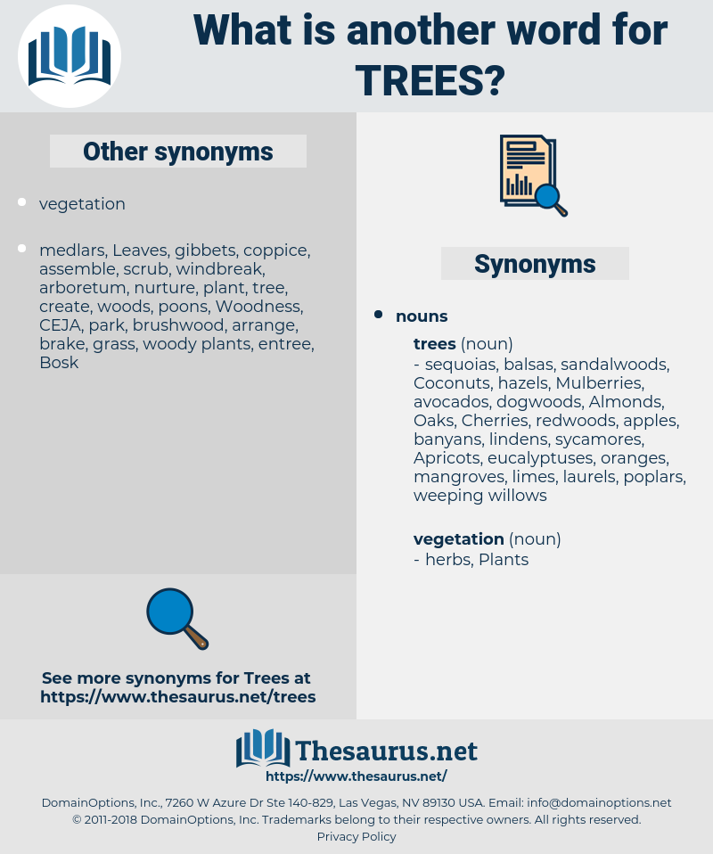 Trees, synonym Trees, another word for Trees, words like Trees, thesaurus Trees